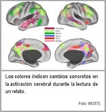 lectura cerebro